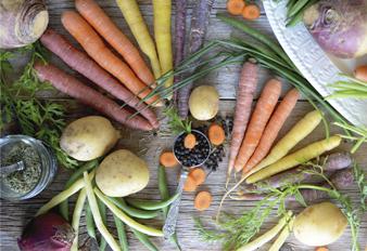Rasa: los sabores de los alimentos