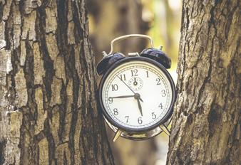 El Reloj Ayurvédico