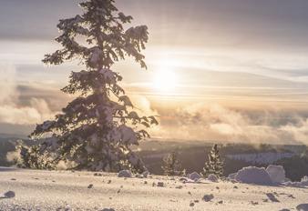 Consejos Ayurvédicos para Invierno