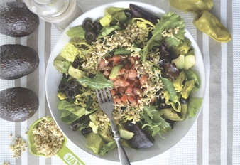 La Dieta del Yogui